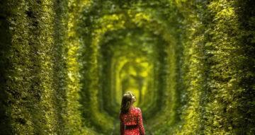 Тоннель любви — самая инстаграмная локация в Украине